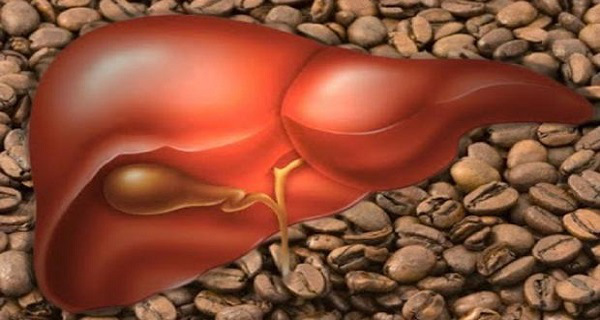 coffe-and-liver