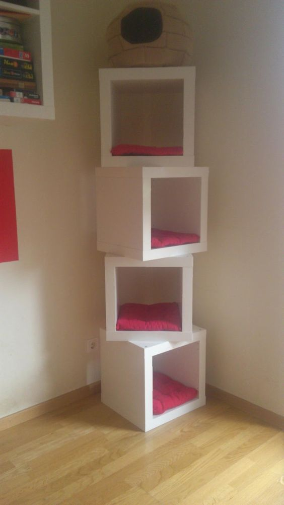 Cat-Cubes