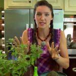 Mettez de la menthe poivrée dans votre maison et vous allez vous débarrasser des araignées et des souris