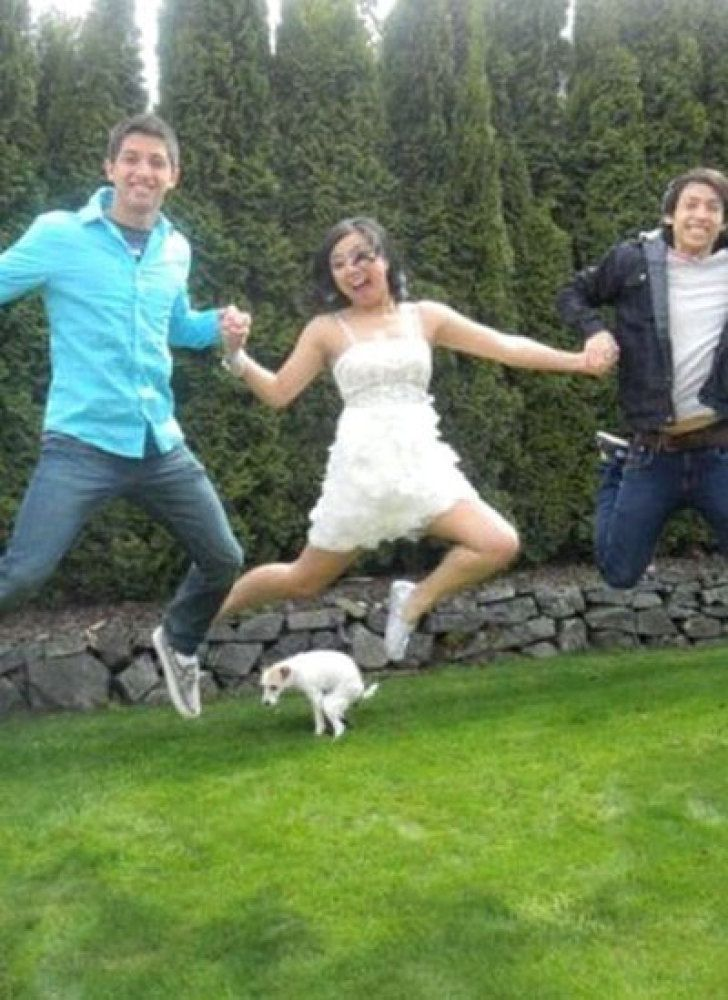 perfectly-timed-dog-photo-jump
