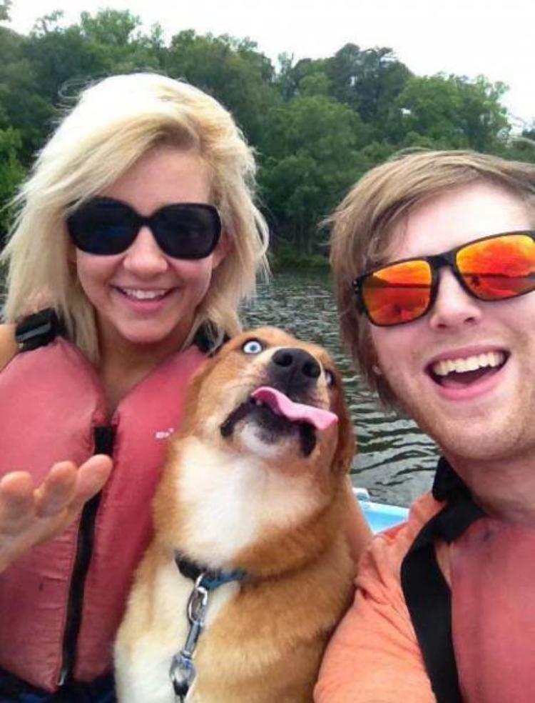 selfie-photobomb-dog-boat