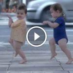 Si vous avez une journée difficile, regardez cette vidéo, à mourir de rire!