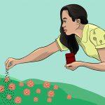 Cet expert du jardinage partage 6 manières d'éloigner les parasites de votre jardin