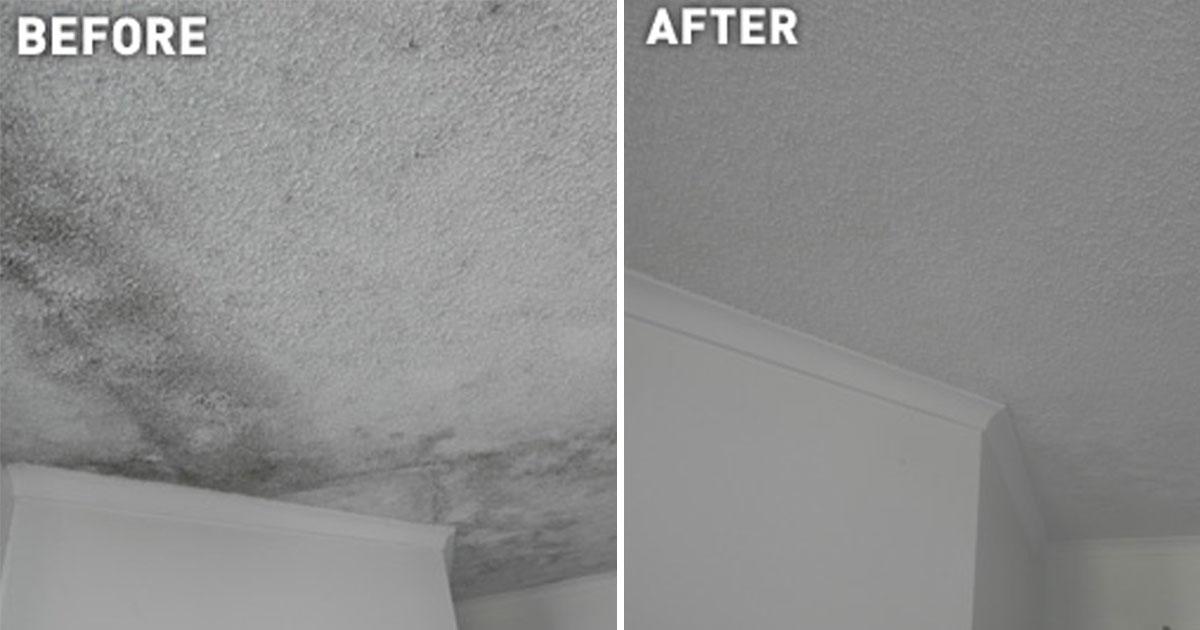 Moisissure plafond chambre dcor faux plafond pour la for Tache moisissure plafond salle bain