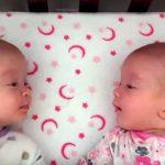 """Ces jumeaux identiques se voient pour la première fois. Leur """"conversation"""" est adorable !"""