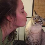 21 photos qui prouvent que les chats sont de véritables démons ...