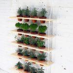 25 mini jardins qui vont vous inspirer