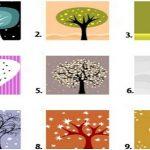 L'arbre que vous choisissez révèle beaucoup de choses sur votre personnalité