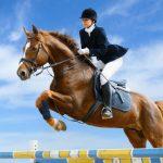 Le sport que vous devriez pratiquer selon votre signe du zodiaque
