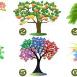 Voici le test de l'arbre. Choisissez un et nous allons révéler vos traits de personnalité
