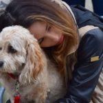 Perdre son chien peut être plus douloureux que perdre un proche