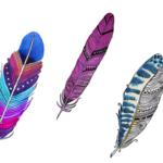 Choisissez une plume et découvrez ce que vous désirez vraiment