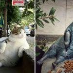 Le chat le plus célèbre d'Istanbul est honoré d'une statue