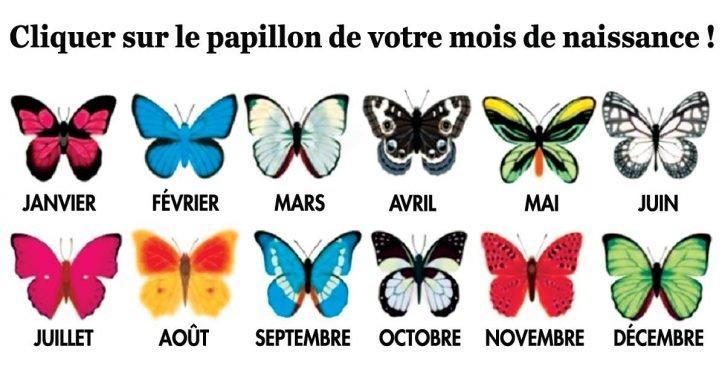 le-papillon-de-votre-mois-de-naissance-revele-de-belles-choses-sur-vous-725x375