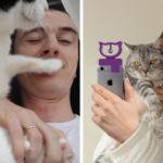 Quelqu'un a inventé un appareil qui vous aidera à prendre le selfie parfait avec votre chat