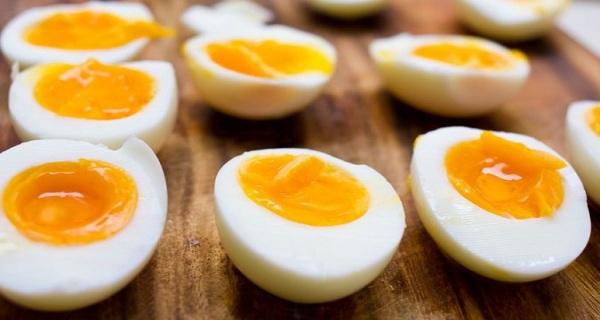egg-diet