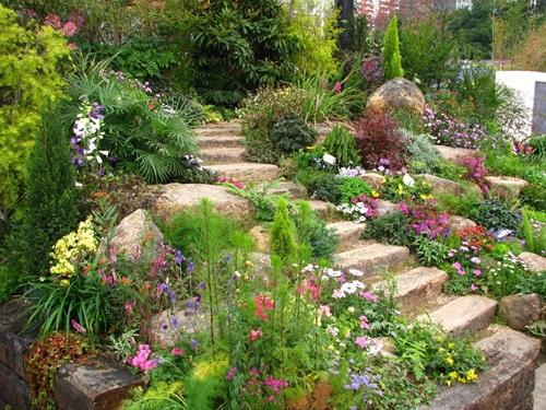 jardin 1jpg