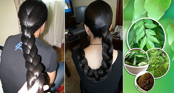 Follow-this-simple-method-to-use-curry-leaves-for-faster-hair-growth