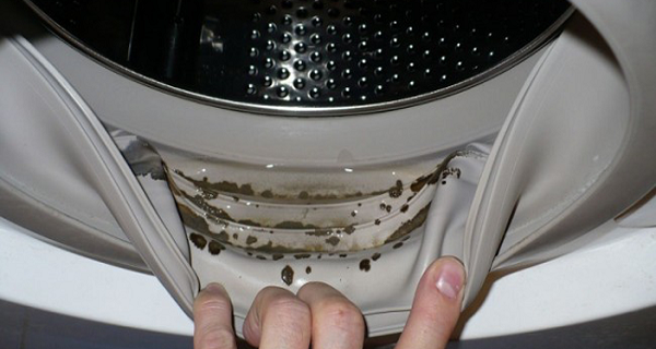 How-to-Remove-Dangerous-Mold-and-Smells-from-Your-Washing-Machine