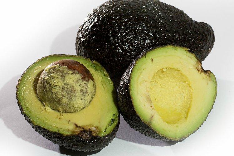 Avocados (1)