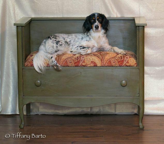 Dresser-Dog-Bed