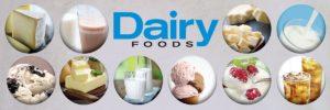 Dairy-Food-300x100