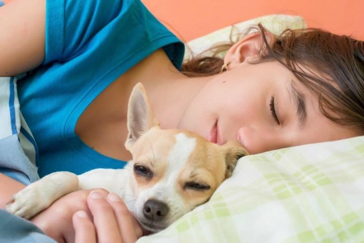Dog-and-Girl-Sleep
