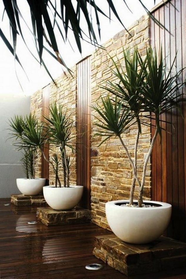 inside-plants-ideas-9-633x949