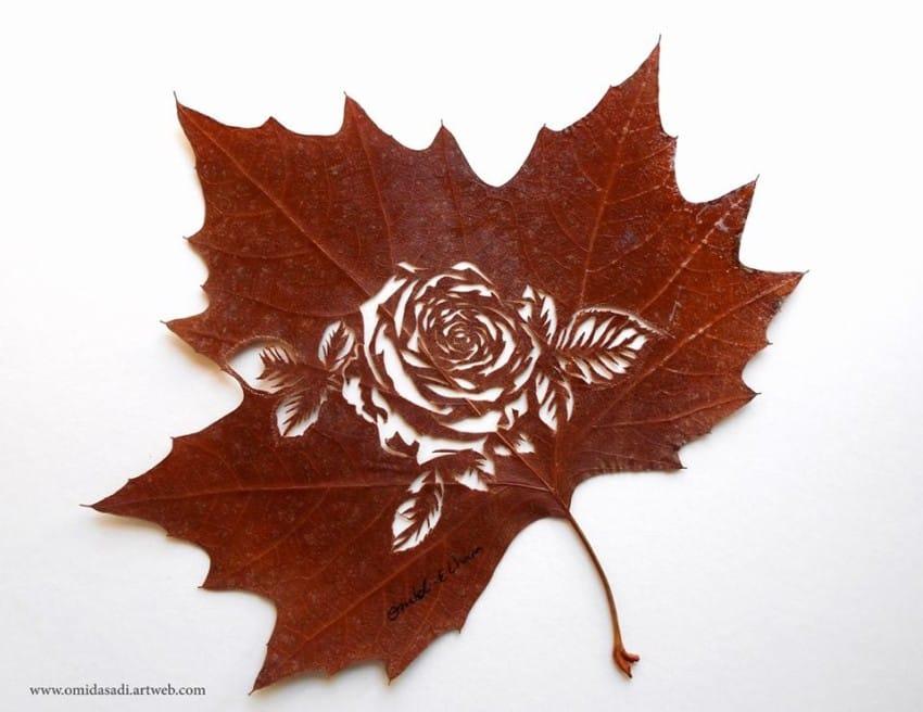 leaf-9-850x656