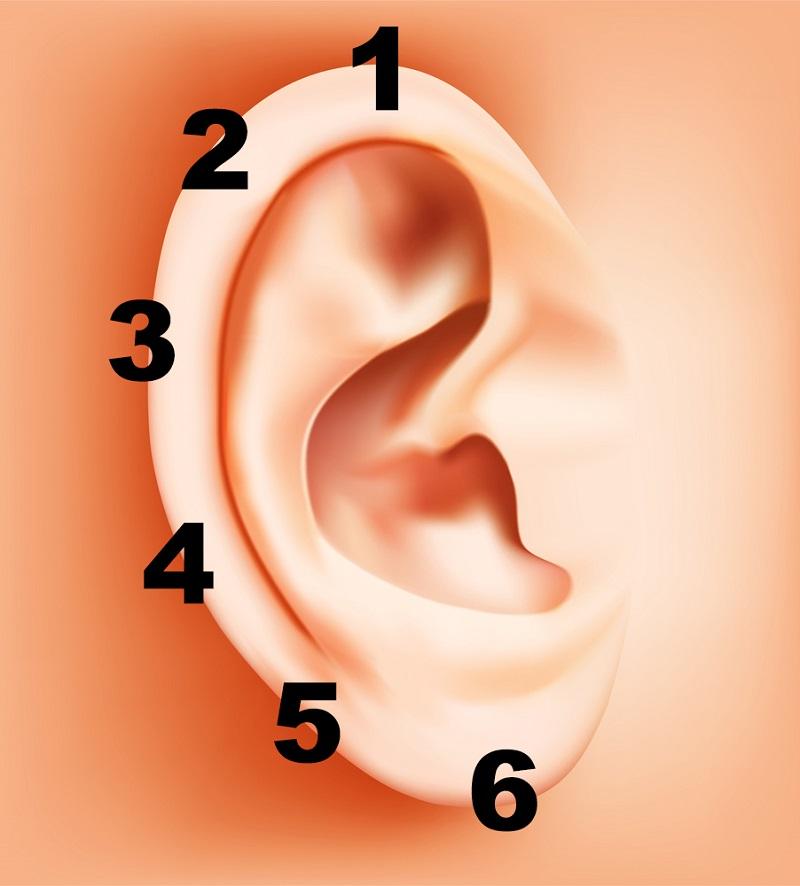 ear-reflexology-01