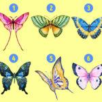 Le papillon que vous choisissez peut révéler les côtés cachés de votre personnalité
