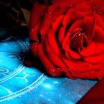 Quelles fleurs vont mieux avec les signes du zodiaque?